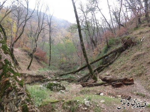 جاذبه های گردشگری گالیکش - قسمت 2