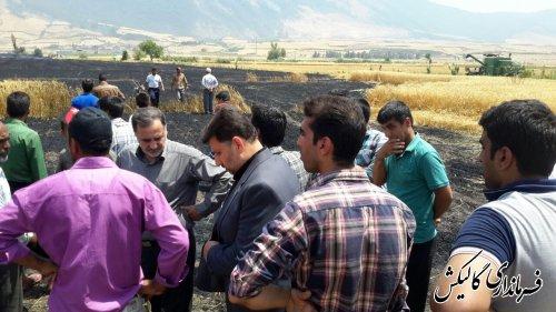 آتش سوزی سه هکتاری مزارع گندم شهرستان گالیکش