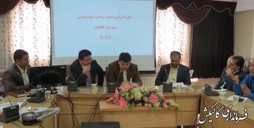 جلسه کارگروه سلامت و امنیت مواد غذایی شهرستان گالیکش برگزار شد