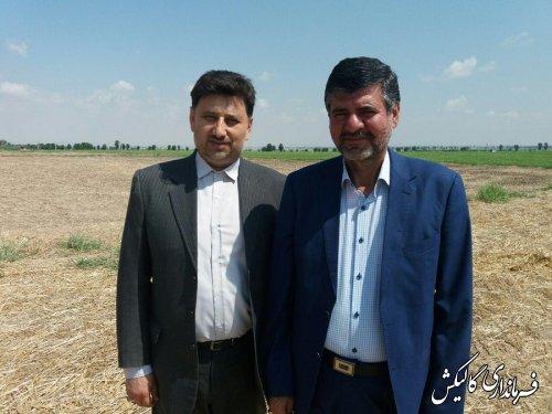 برای اولین بار شهرک گیاهان داروئی کشور و استان گلستان در گالیکش راه اندازی می شود