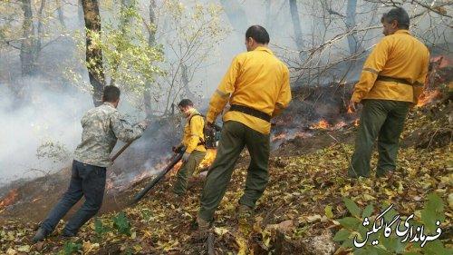بخش وسیعی از آتشسوزی جنگلهای گالیکش مهار شد