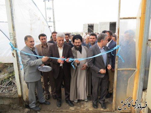 افتتاح بزرگترین گلخانه سبزی و صیفیجات یکپارچه استان در شهرستان گالیکش