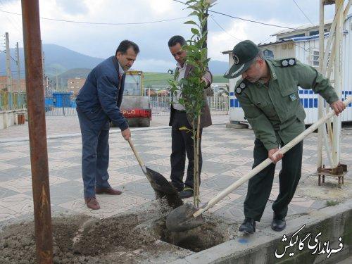 فرماندار و مسئولین شهرستان گالیکش چند اصله نهال غرس کردند