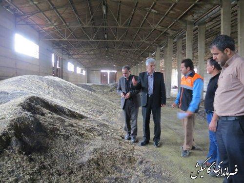 بازدید فرماندار گالیکش از مراکز خرید تضمینی کلزا
