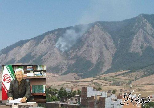 آتشسوزی در منطقه صخرهای نیلکوه مهار شد