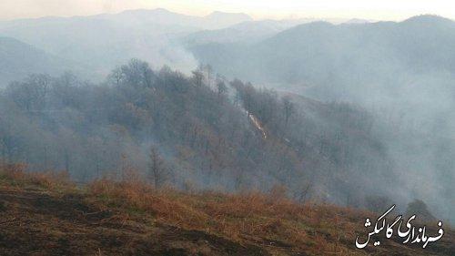 آتش در مناطق جنگلی شهرستان گالیکش مهار شده است