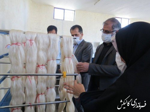 بازدید فرماندار گالیکش از اولین کارگاه تولیدی نخ ابریشم استان گلستان در شهرستان