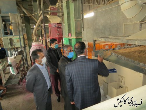بازدید فرماندار گالیکش از دو شرکت تعاونی برتر استانی این شهرستان