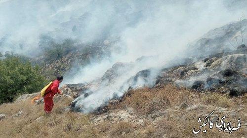 تلاش برای مهار آتشسوزی در عرصههای جنگلی گالیکش ادامه دارد